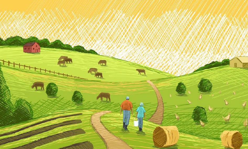 The 2017 Census of Agriculture: New Data for an Old Industry